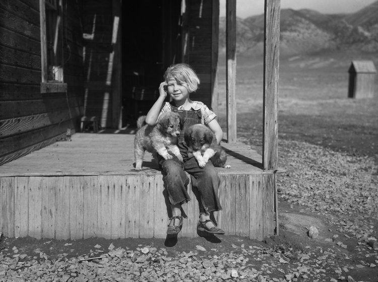 Daughter of farmer in RA purchase area, Oneida County, Idaho. 1936